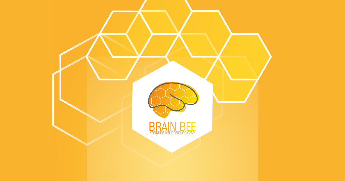 how to prepare for brain bee