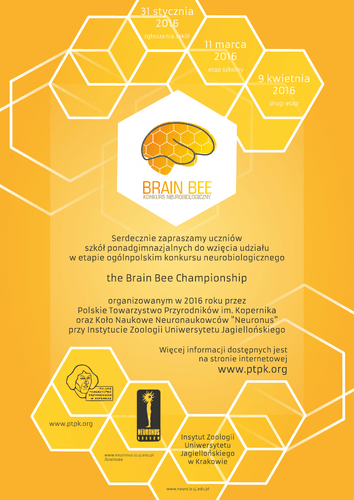 Brain Bee - plakat