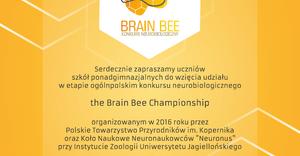 Brain Bee - plakat