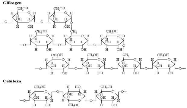 Glikogen i celuloza - wzory
