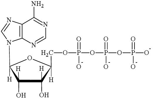 ATP - schemat
