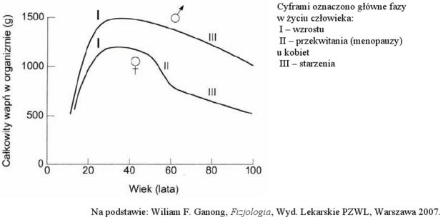 Wykres zawartości wapnia w organizmie