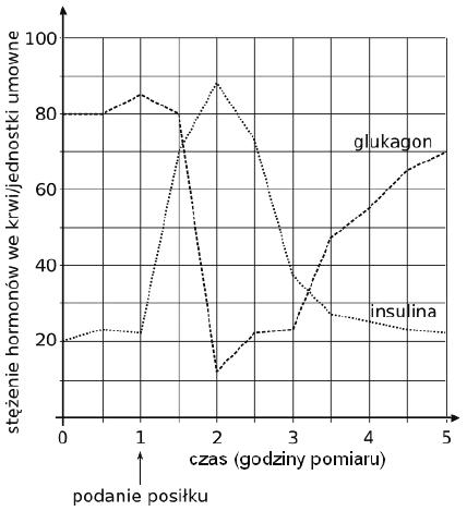Wykres stężenia insuliny i glukagonu