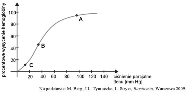 Wysycenie hemoglobiny tlenem - wykres