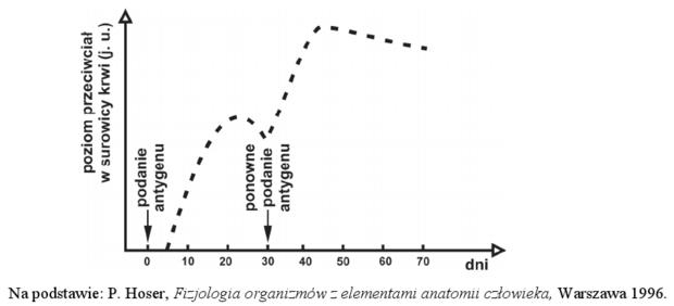 Odpowiedź odpornościowa - wykres